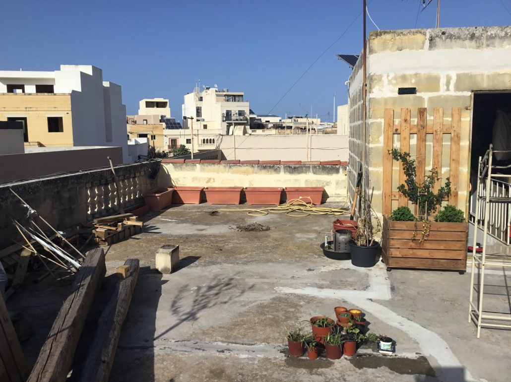 rooftopgarden: beginning without vegetable garden