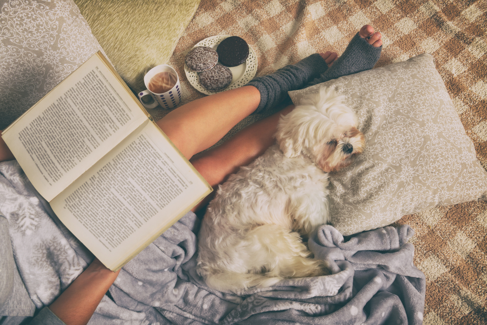 Maltese folklore & stories: 10 Books for your Home's library
