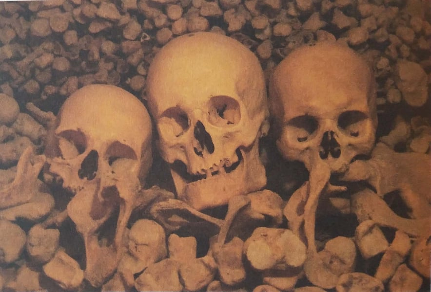 Some of the human remains which were found